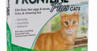 Product-Card-Frontline-Plus-Cats.jpg