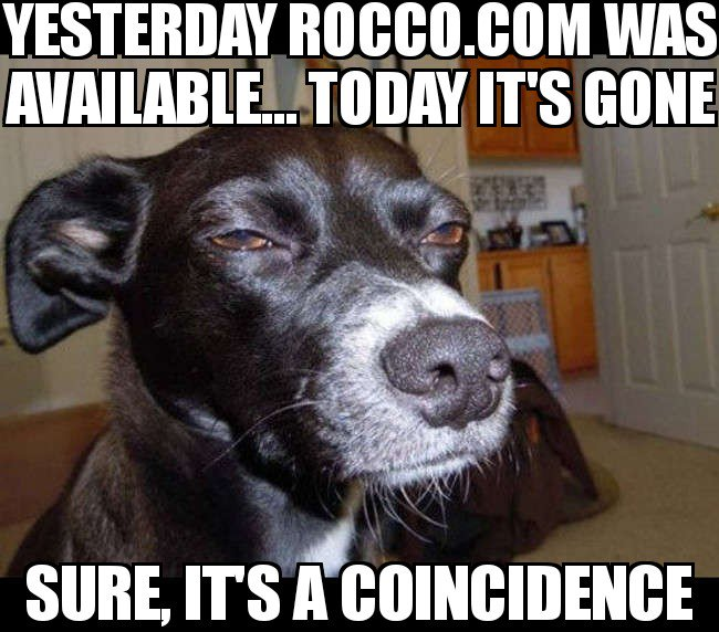 You Have a Conspiracy Theory about Domain Registrars