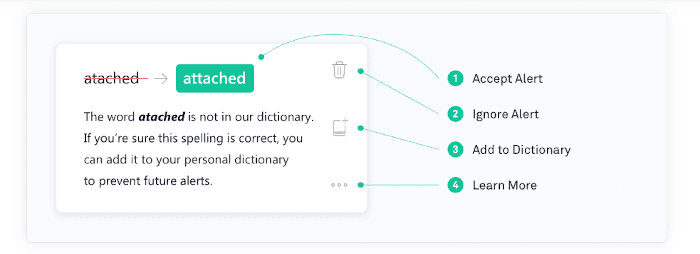 Grammarly Review: bug fixes in Word